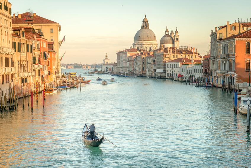 Venice AIPLA